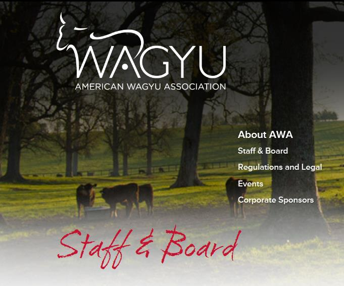 Candidates For The Upcoming AWA Board Member Elections