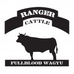 RANGER CATTLE