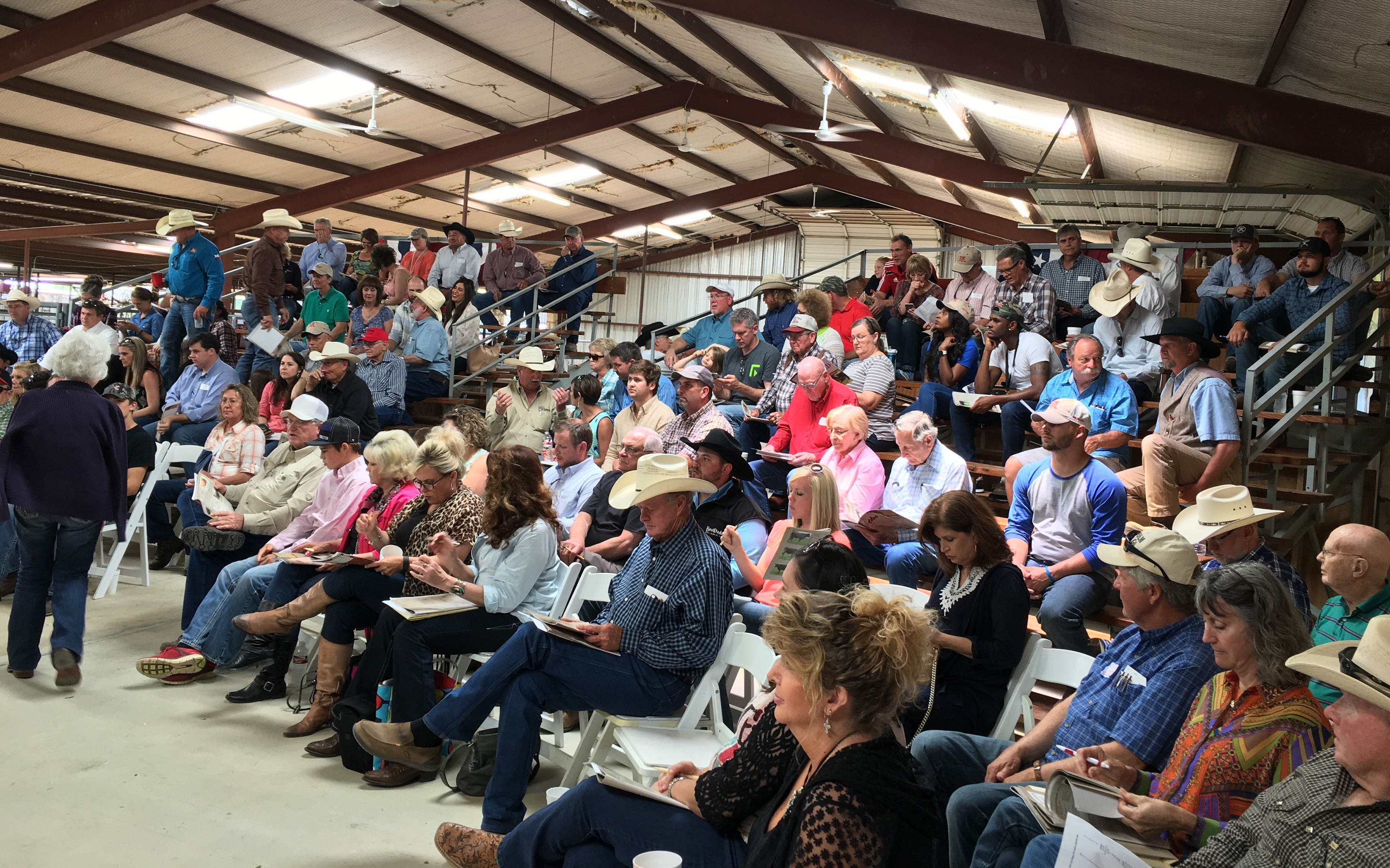 Salado pic crowd1