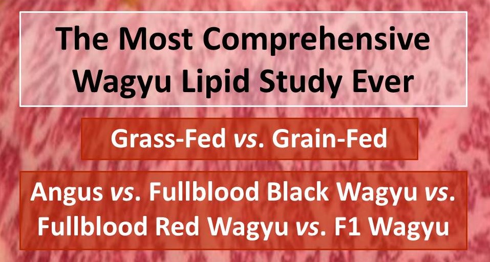 The Most Comprehensive Wagyu Lipid Study Ever