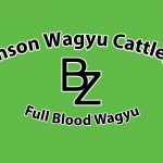 Branson Wagyu Cattle