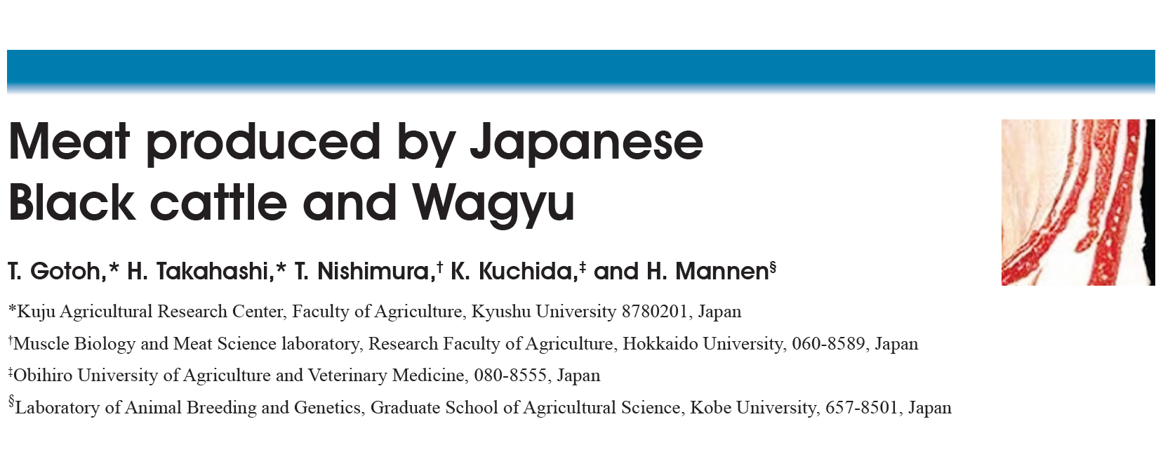 Meat Produced By Japanese Black Cattle And Wagyu – Graphic