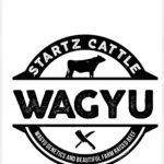 Startz Cattle CO.